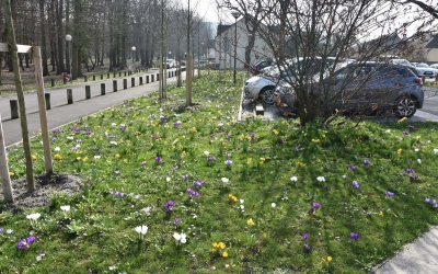 Parking du Plessis-Bouchard