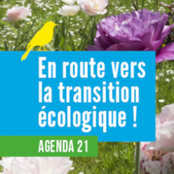 agenda 21 vignette.png