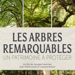 arbres_remarquables.jpg