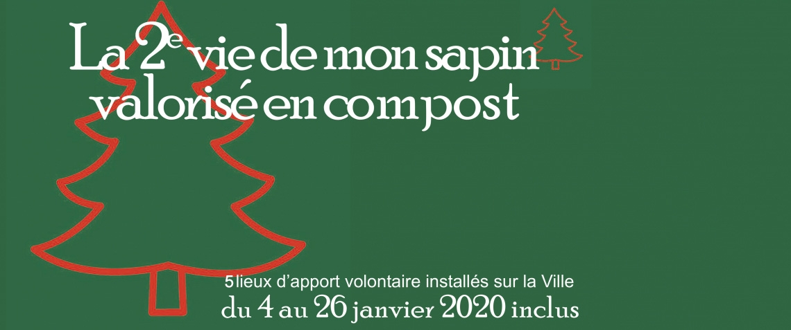 recyclage_sapin5_bandeau_copie.jpg